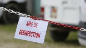Le Foll espère la fin prochaine de l'épidémie de grippe aviaire