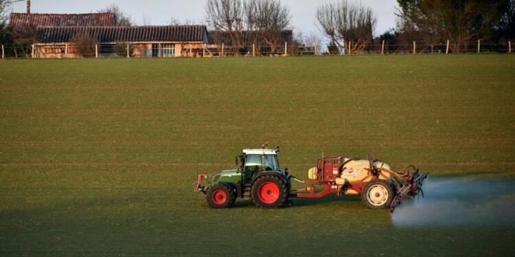 Bretagne: lente prise de conscience des méfaits des pesticides sur la santé