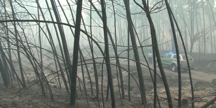 Portugal: gigantesque incendie de forêt, 57 morts