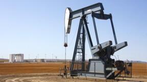 Pétrole : Saudi Aramco, des dividendes dopés pour réussir l'introduction en Bourse?