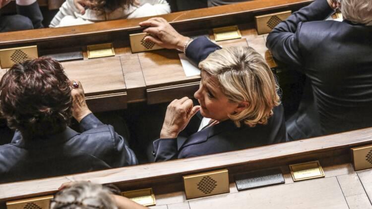 Le Pen, Dupont-Aignan, Pinel… Les 18 députés non-inscrits auront du mal à se faire entendre à l'Assemblée