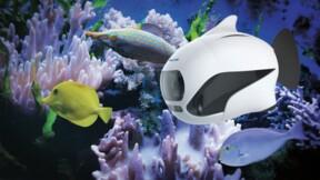 Biki, le premier drone sous-marin qui se fait passer pour un poisson