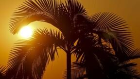 La température mondiale devrait monter de plus de 2° d'ici 2100