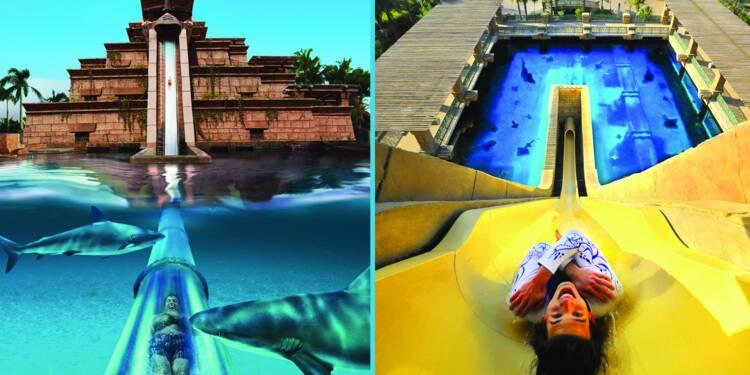 Sensations fortes : découvrez les parcs aquatiques les plus fous