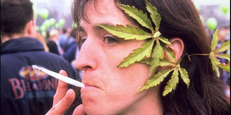 Les Français champions d'Europe du... cannabis
