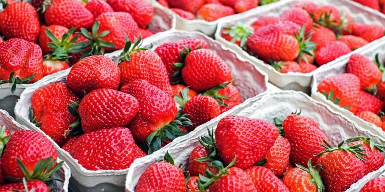 Cette start-up a inventé les fraises du futur