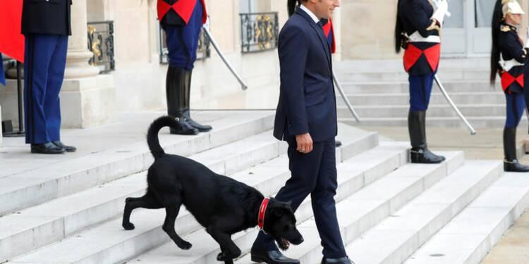 La popularité de Macron chute de 11 points dans un sondage BVA