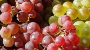 Foires aux vins 2017 : les meilleures bouteilles du site Vente-privee.com