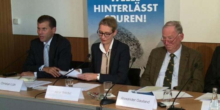 Elections allemandes: le vent en poupe, l'AfD cible l'islam