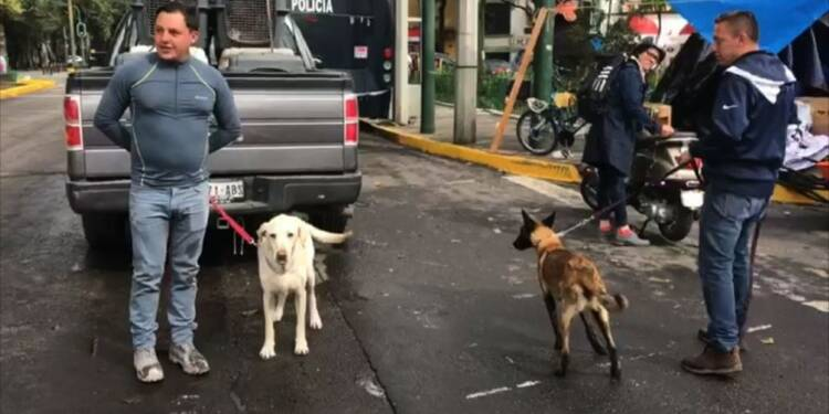Mexico toujours à la recherche de survivants du séisme