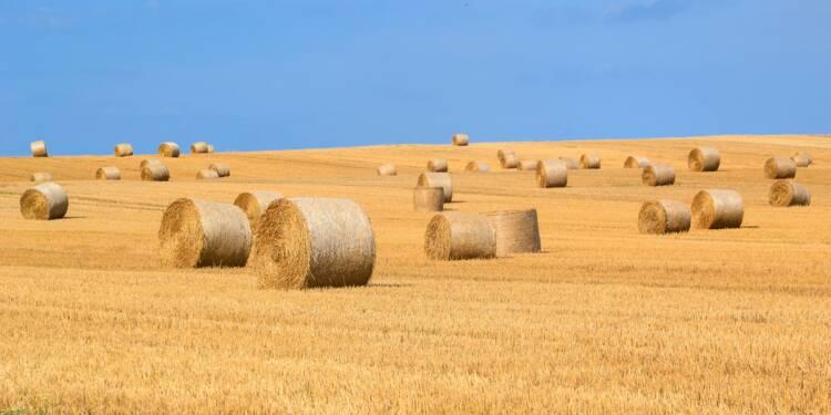 Agrogeneration, le conseil Bourse du jour