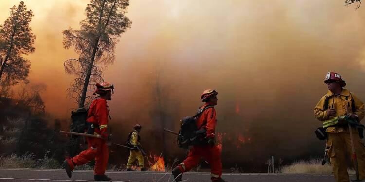 Incendies en Californie : des prisonniers pour sauver les vignobles