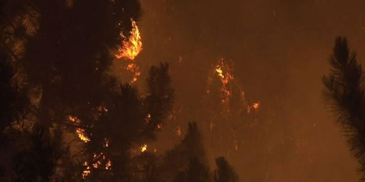 Corse: plus de 2.000 hectares brûlés en Balagne