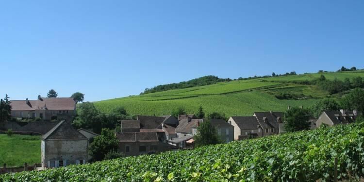 Quiz : êtes-vous au top sur les vins de Bourgogne ... ou besoin d'une mise à niveau ?