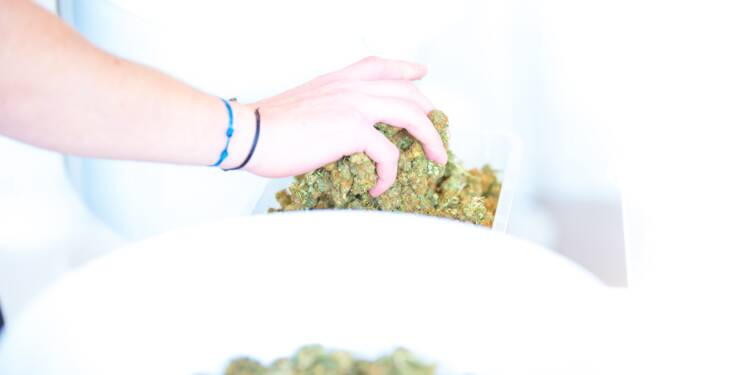 """Le cannabis """"légal"""" arrive en France"""