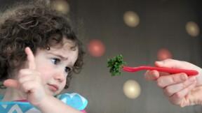 Imposer une journée végétarienne par semaine à l'école,  une bonne idée ?