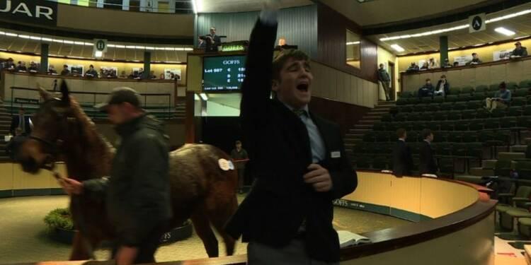 Les éleveurs de chevaux de course irlandais inquiets du Brexit