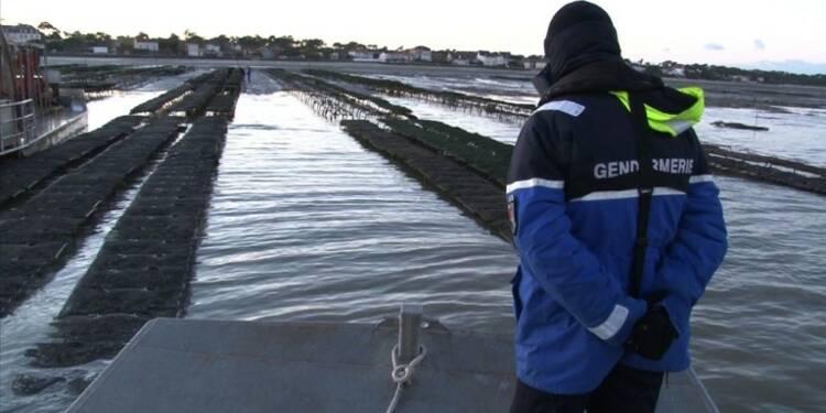 La gendarmerie traque les voleurs d'huîtres