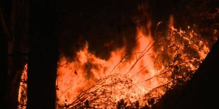 Pas d'accalmie pour l'incendie monstre en Californie
