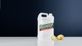 Glyphosate : il ne sera pas facile à éradiquer !
