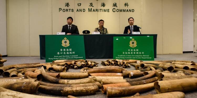 Enfin, la Chine met fin au commerce de l'ivoire !