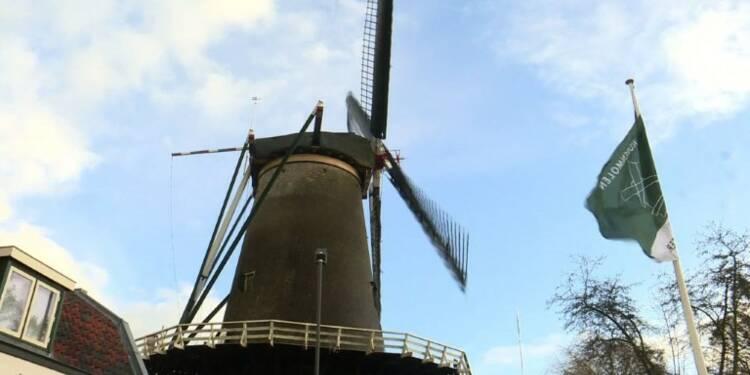 Pays-Bas:l'Unesco fait souffler un vent nouveau dans les moulins
