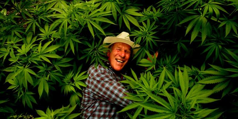 Faut-il dépénaliser le cannabis?