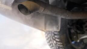 Volkswagen, Daimler, BMW : des cobayes humains pour inhaler des gaz d'échappement?