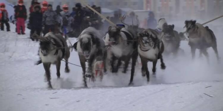 Les nomades nenets s'affrontent dans des courses de rennes