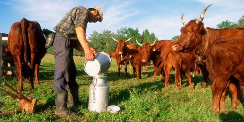 Retraite des agriculteurs : la revalorisation ne sera pas pour tout de suite