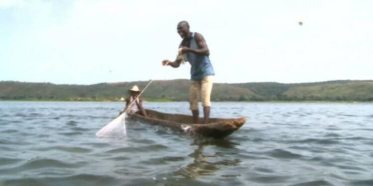 En Centrafrique, les déplacés du fleuve Oubangui