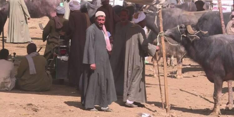 Dans le sud égyptien, Sissi incontournable malgré la crise