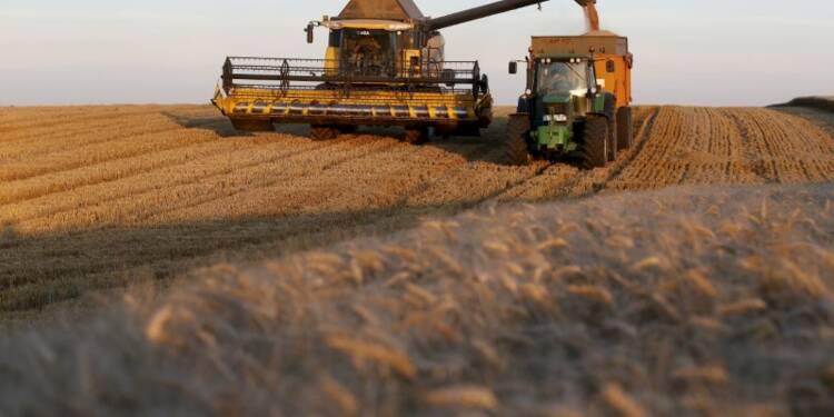 Les exports de céréales plombés par les perturbations du rail