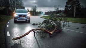 Cette étonnante technologie de Volvo devrait réduire le nombre d'accidents