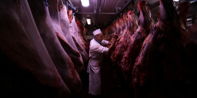 La viande de boeuf française bientôt vendue en Chine