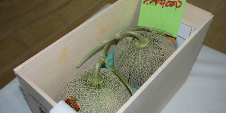 Japon : une somme folle payée pour deux melons!