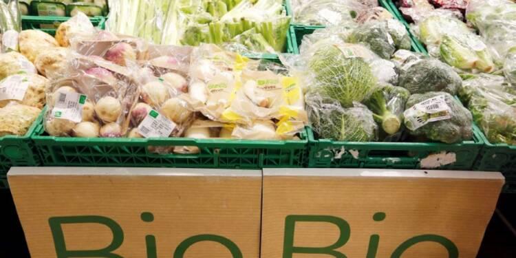 L'agriculture bio progresse en France, les céréales à la traîne