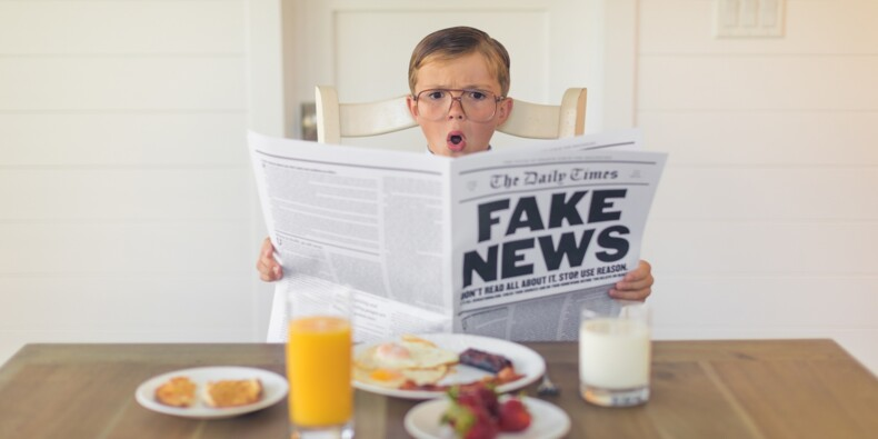 """Loi sur les """"fake news"""" : est-elle dangereuse pour la liberté de la presse  ?"""