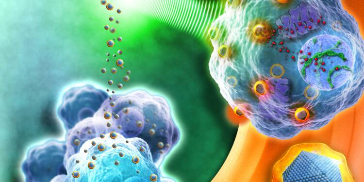 Le français Nanobiotix signe une avancée majeure contre le cancer et s'envole en Bourse !