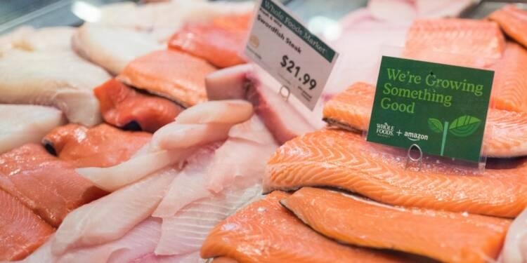 Le saumon toujours plus cher et de plus en plus rare