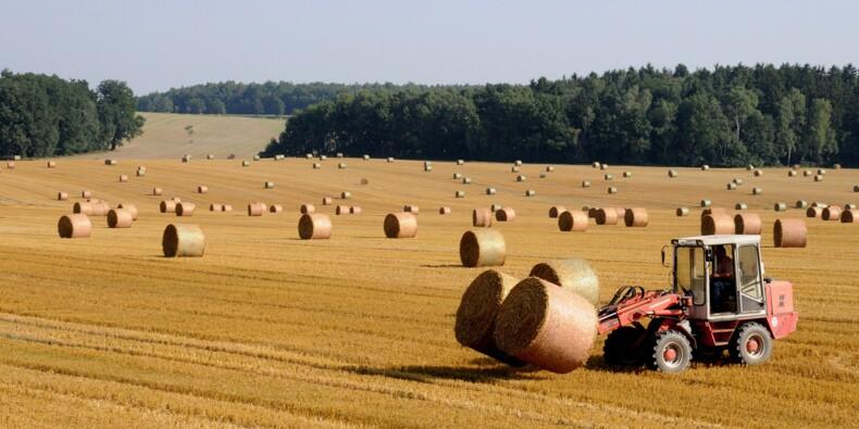 Agriconomie, le site qui va changer la vie des agriculteurs !