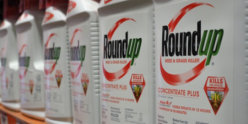 Procès Roundup: Monsanto condamné à payer plus de 80 millions de dollars