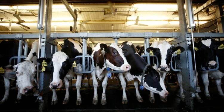 Le Canada prêt à offrir un accès aux USA à son marché laitier
