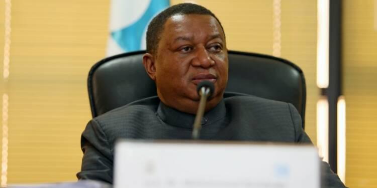 La baisse des capacités de réserve préoccupe l'OPEP — Pétrole