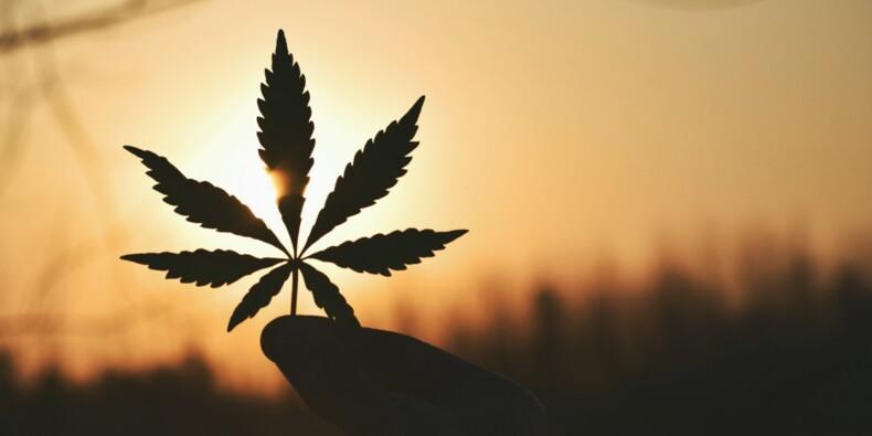 Légalisation du cannabis : jackpot en perspective pour le Canada