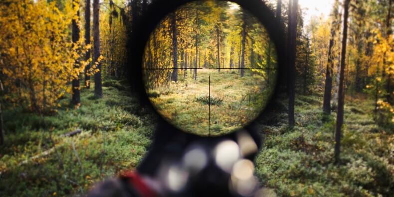 Une prime au mérite pour les chasseurs de Charente-Maritime