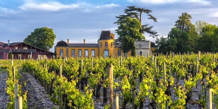 Ce viticulteur bordelais a arrêté le bio, parce que trop polluant