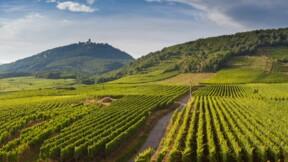 Aude : la Région revend un château trois fois moins cher qu'elle l'avait acheté