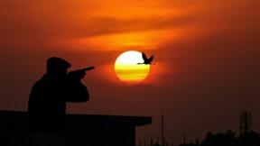 La région Normandie finance un radar à oiseaux pour les chasseurs