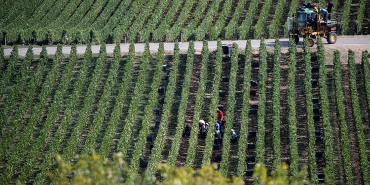 Les ventes de champagne de Vranken Pommery freinées par les Gilets jaunes